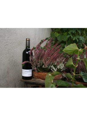 Bergerac Rouge Jour de Fruit