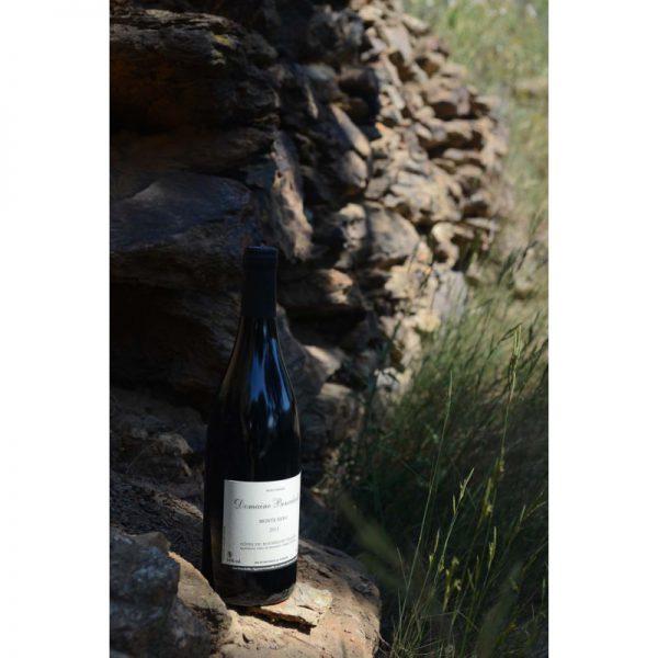 """Côtes du Roussillon Villages """"Monte Nero"""""""