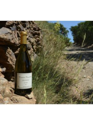 """Côtes du Roussillon """"Les Orris"""" Blanc"""